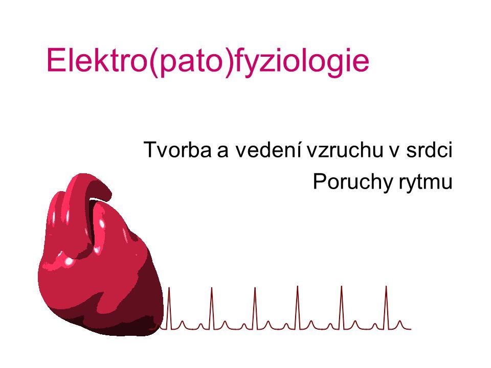 Elektro(pato)fyziologie Tvorba a vedení vzruchu v srdci Poruchy rytmu