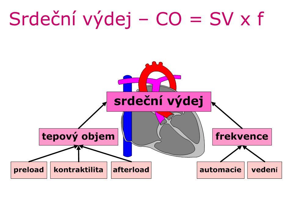 Fibrilace a flutter síní –depolarizace bez zjevného pacemakeru u fibrilace chaoticky se šířící –negeneruje žádné tlaky –vyvolávající faktory: dilatace, hypoxie, [K + ], [Ca 2+ ], [H + ] Síňová fibrilace –fibrilační vlnky (350-600/min) – CO ~15% –frekvence nepravidelná normální nebo tachyarytmie –podkladem nejč.