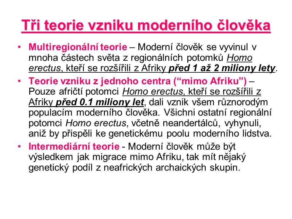 Tři teorie vzniku moderního člověka Multiregionální teorie – Moderní člověk se vyvinul v mnoha částech světa z regionálních potomků Homo erectus, kteř