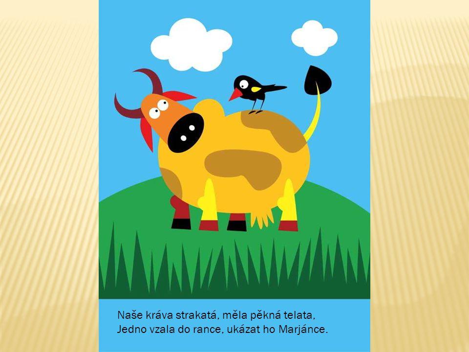 Naše kráva strakatá, měla pěkná telata, Jedno vzala do rance, ukázat ho Marjánce.