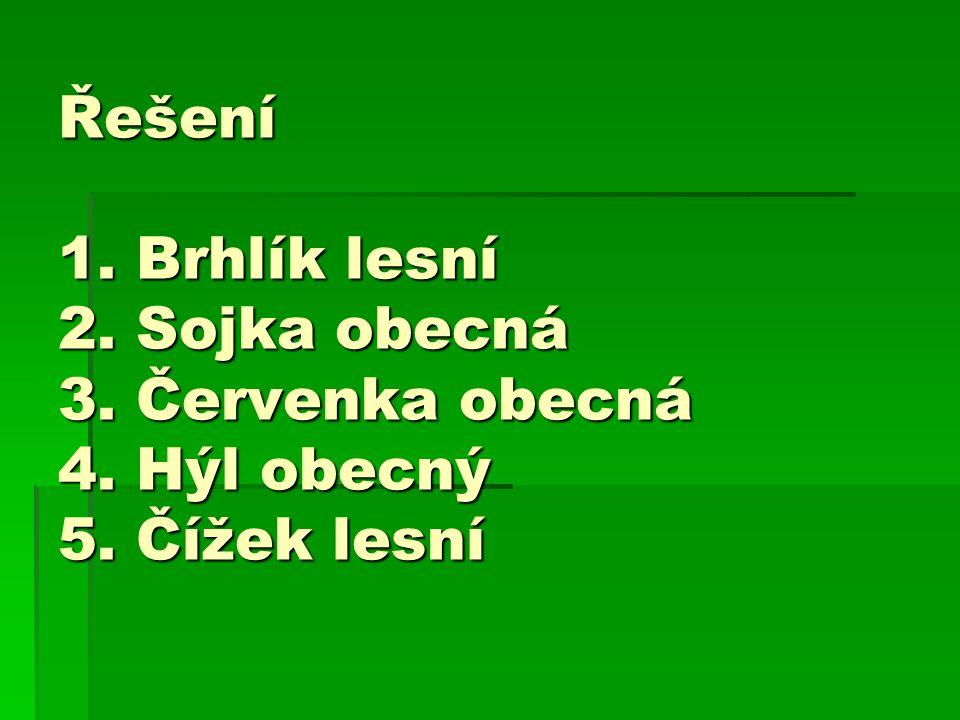 Řešení 1. Brhlík lesní 2. Sojka obecná 3. Červenka obecná 4. Hýl obecný 5. Čížek lesní