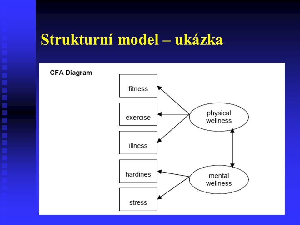 Strukturní model – ukázka
