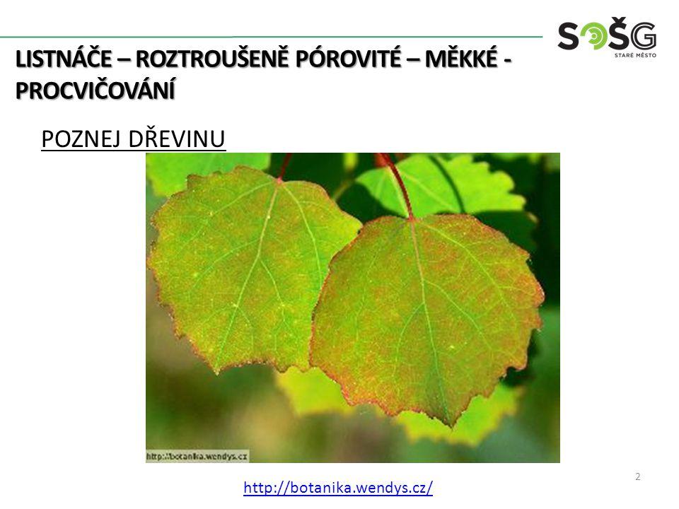 LISTNÁČE – ROZTROUŠENĚ PÓROVITÉ – MĚKKÉ - PROCVIČOVÁNÍ POZNEJ DŘEVINU 2 http://botanika.wendys.cz/