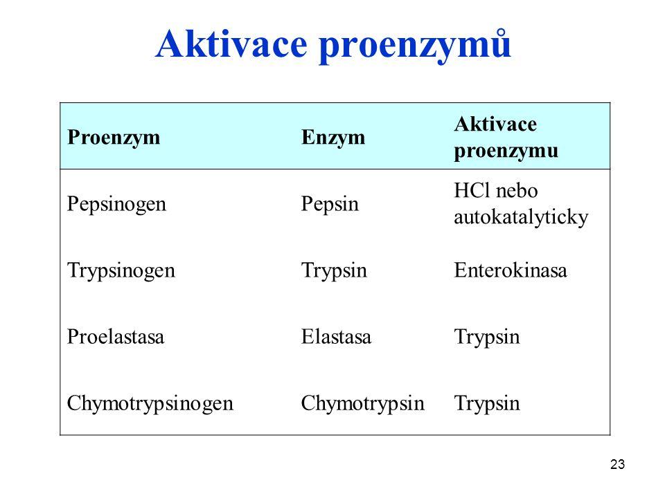 23 Aktivace proenzymů ProenzymEnzym Aktivace proenzymu PepsinogenPepsin HCl nebo autokatalyticky TrypsinogenTrypsinEnterokinasa ProelastasaElastasaTry
