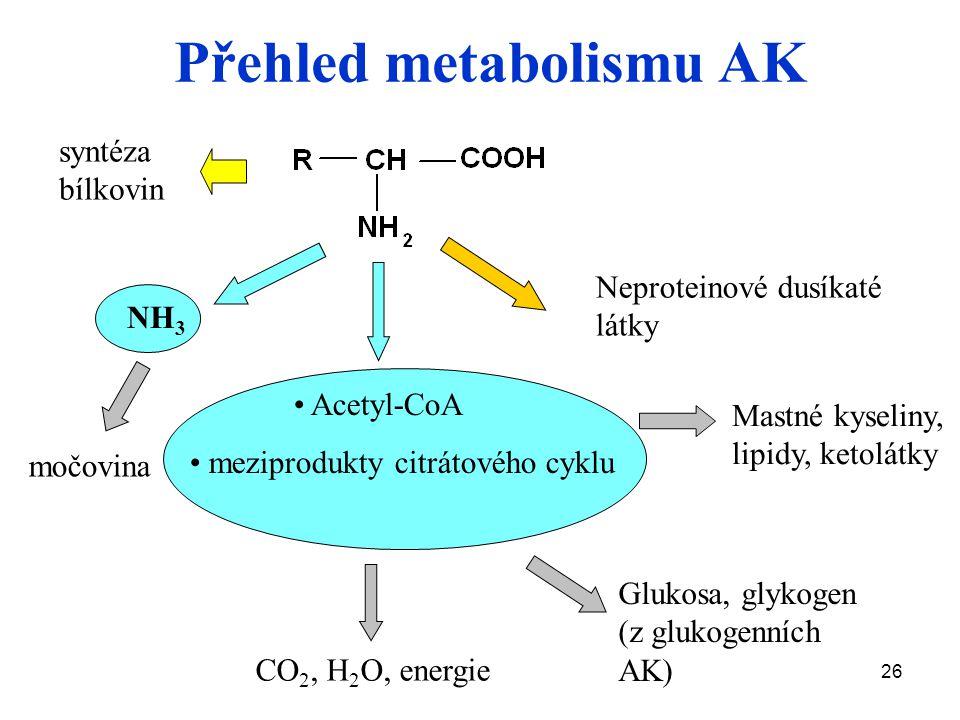 26 Přehled metabolismu AK NH 3 Acetyl-CoA meziprodukty citrátového cyklu CO 2, H 2 O, energie Glukosa, glykogen (z glukogenních AK) Mastné kyseliny, lipidy, ketolátky Neproteinové dusíkaté látky syntéza bílkovin močovina