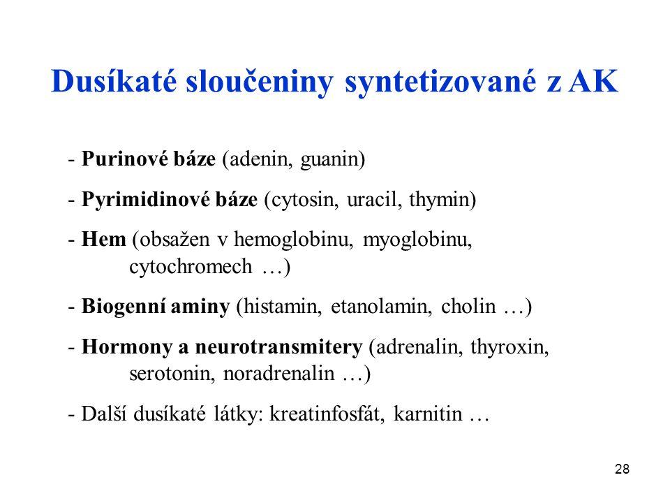 28 Dusíkaté sloučeniny syntetizované z AK - Purinové báze (adenin, guanin) - Pyrimidinové báze (cytosin, uracil, thymin) - Hem (obsažen v hemoglobinu, myoglobinu, cytochromech …) - Biogenní aminy (histamin, etanolamin, cholin …) - Hormony a neurotransmitery (adrenalin, thyroxin, serotonin, noradrenalin …) - Další dusíkaté látky: kreatinfosfát, karnitin …
