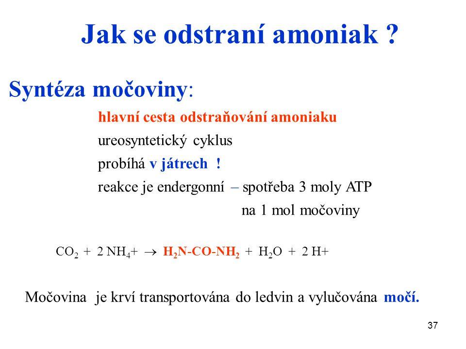 37 Jak se odstraní amoniak ? Syntéza močoviny: hlavní cesta odstraňování amoniaku ureosyntetický cyklus probíhá v játrech ! reakce je endergonní – spo