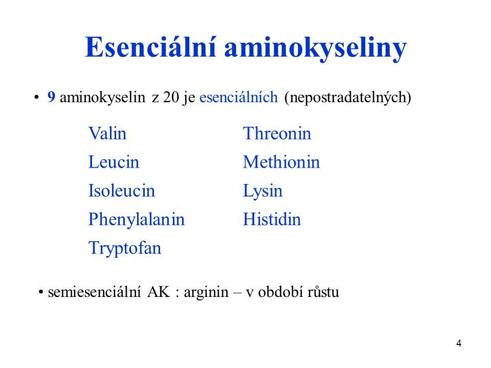 4 Esenciální aminokyseliny 9 aminokyselin z 20 je esenciálních (nepostradatelných) Valin Leucin Isoleucin Phenylalanin Tryptofan Threonin Methionin Lysin Histidin semiesenciální AK : arginin – v období růstu