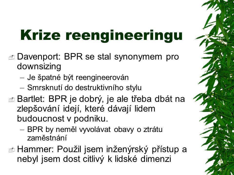 Krize reengineeringu  Davenport: BPR se stal synonymem pro downsizing –Je špatné být reengineerován –Smrsknutí do destruktivního stylu  Bartlet: BPR je dobrý, je ale třeba dbát na zlepšování idejí, které dávají lidem budoucnost v podniku.