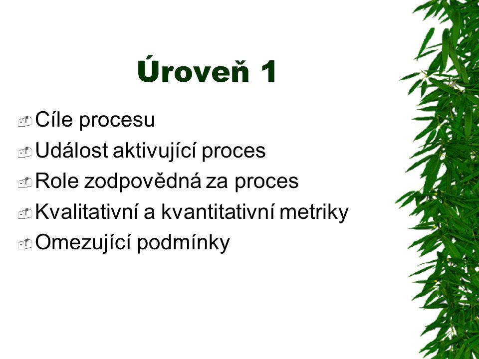 Úroveň 1  Cíle procesu  Událost aktivující proces  Role zodpovědná za proces  Kvalitativní a kvantitativní metriky  Omezující podmínky
