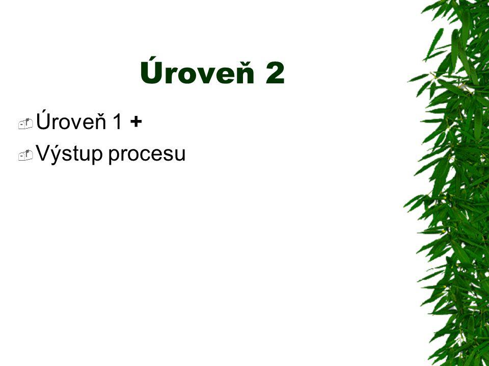 Úroveň 2  Úroveň 1 +  Výstup procesu