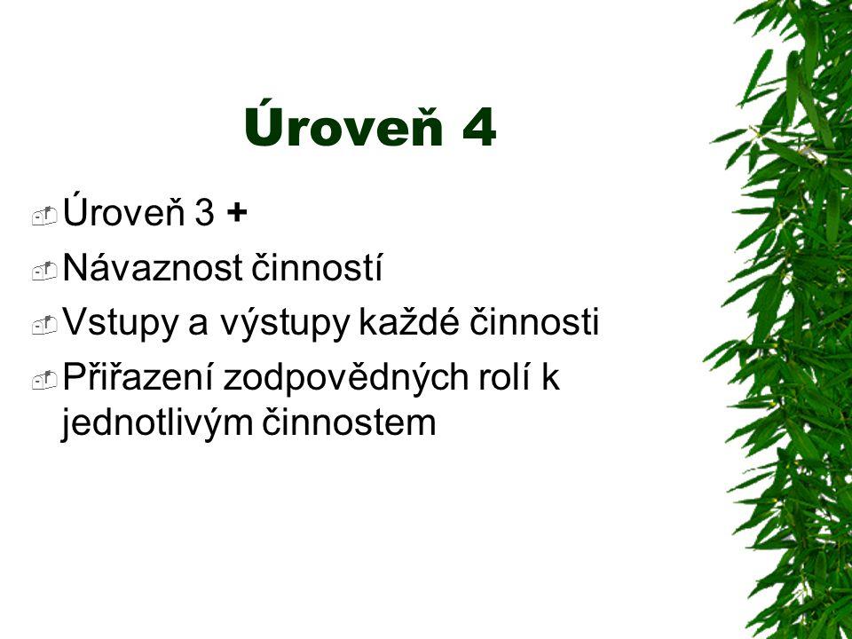 Úroveň 4  Úroveň 3 +  Návaznost činností  Vstupy a výstupy každé činnosti  Přiřazení zodpovědných rolí k jednotlivým činnostem