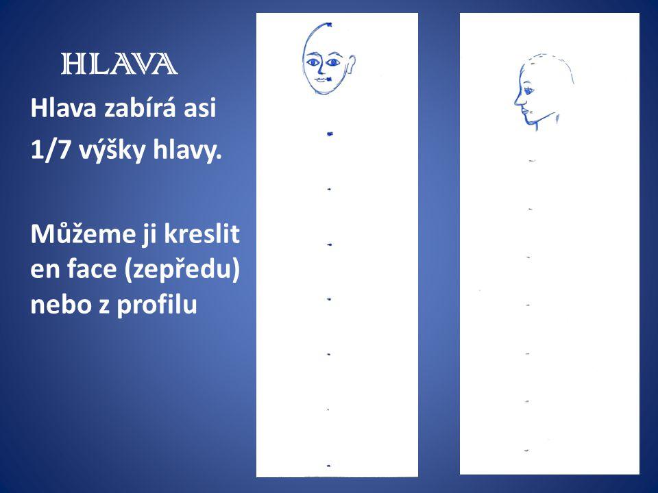 HLAVA Hlava zabírá asi 1/7 výšky hlavy. Můžeme ji kreslit en face (zepředu) nebo z profilu