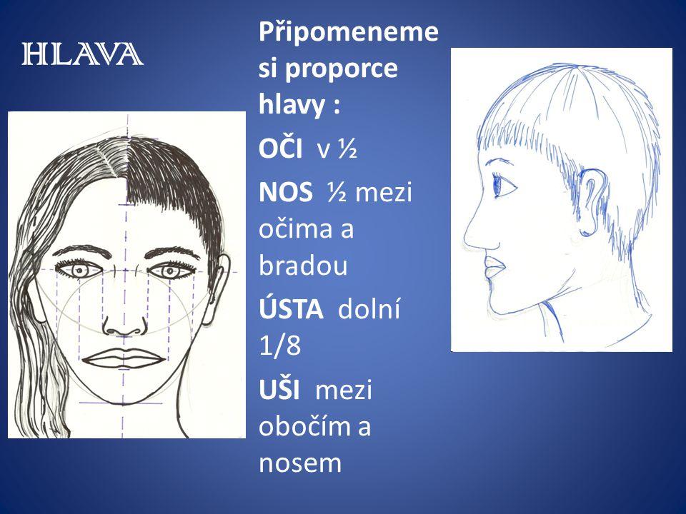 HLAVA Připomeneme si proporce hlavy : OČI v ½ NOS ½ mezi očima a bradou ÚSTA dolní 1/8 UŠI mezi obočím a nosem