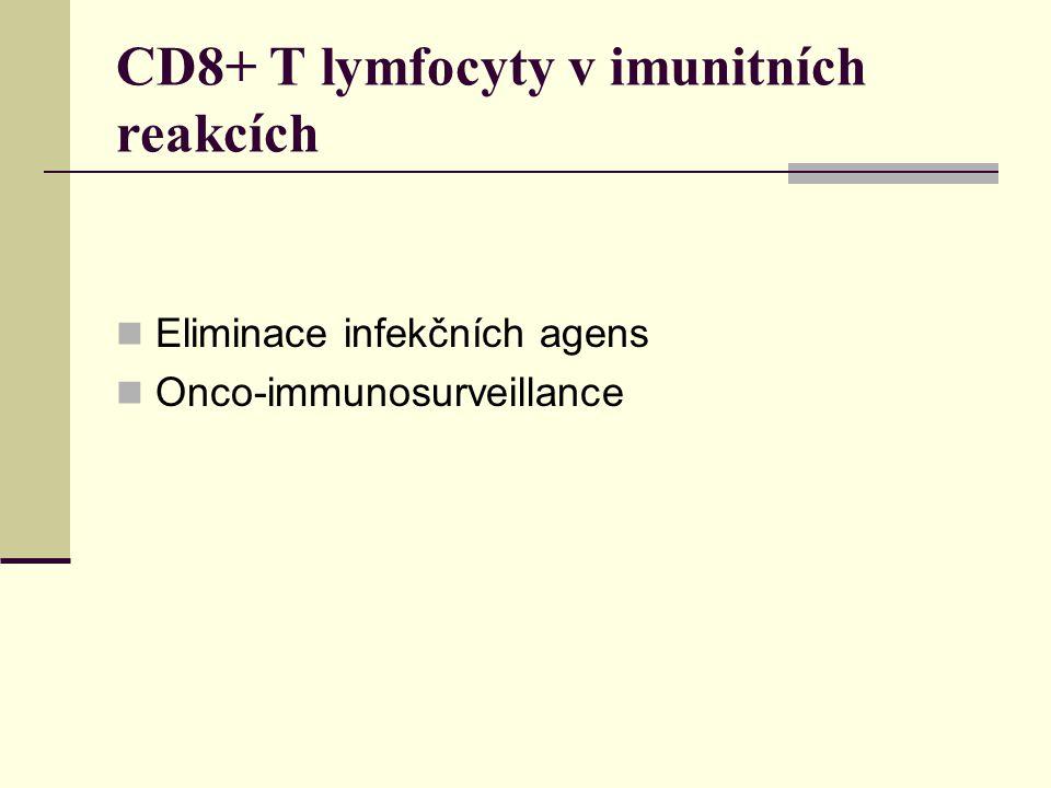 CD8+ T lymfocyty v imunitních reakcích Eliminace infekčních agens Onco-immunosurveillance