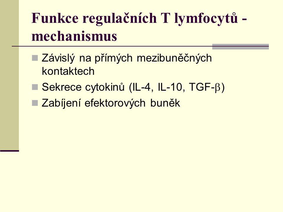Funkce regulačních T lymfocytů - mechanismus Závislý na přímých mezibuněčných kontaktech Sekrece cytokinů (IL-4, IL-10, TGF-  ) Zabíjení efektorových