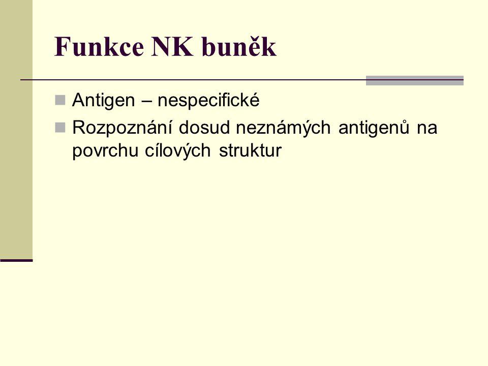 Funkce NK buněk Antigen – nespecifické Rozpoznání dosud neznámých antigenů na povrchu cílových struktur