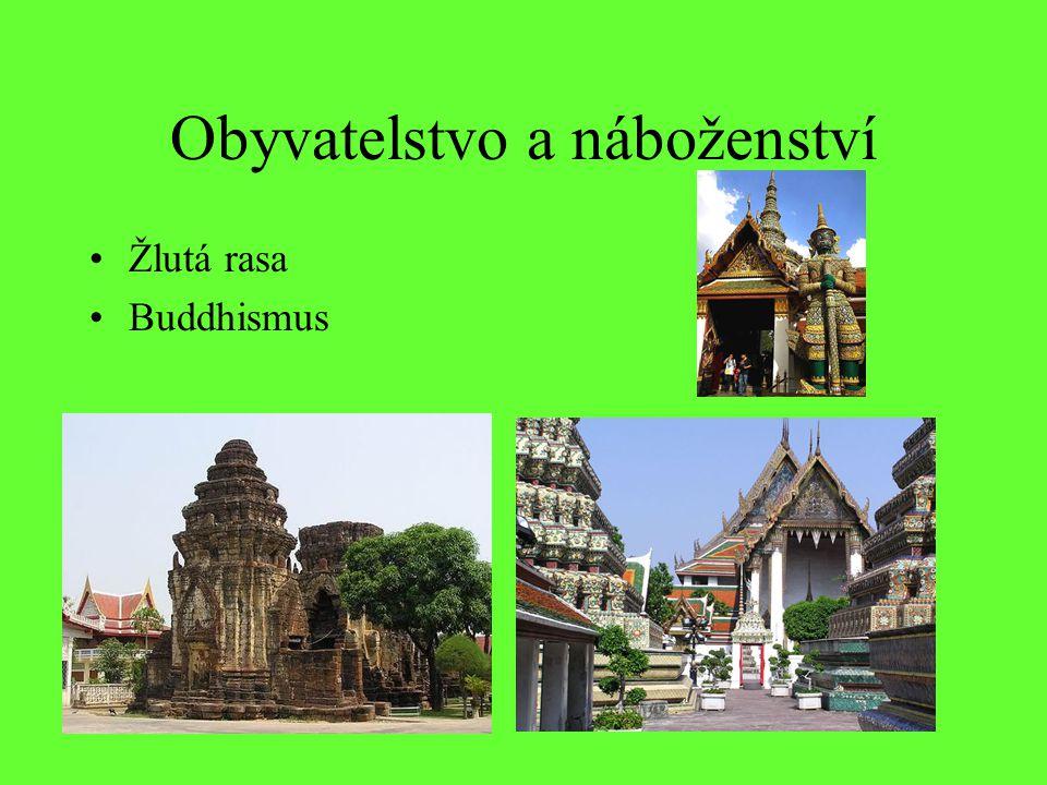 Obyvatelstvo a náboženství Žlutá rasa Buddhismus