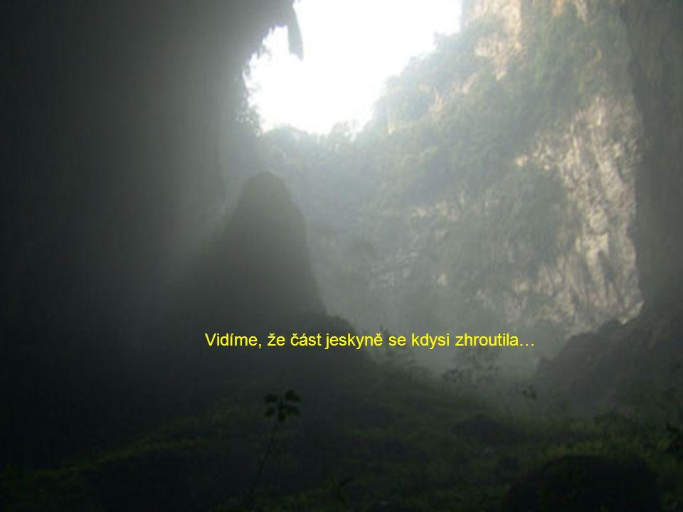 Zřícení: čtvrt míle pod povrchem džungle Dolines se vytvořil systém, ve kterém část stropu jeskyně se zhroutila, což umožňuje vytváření nových ekosyst