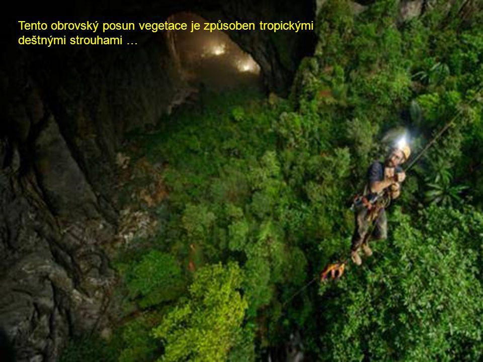 Nová jeskyně je 200 metrů vysoká a 150 metrů široká, zdá se být téměř dvakrát větší než současný rekordman – jeskyně Deer Cave v Malajsii.