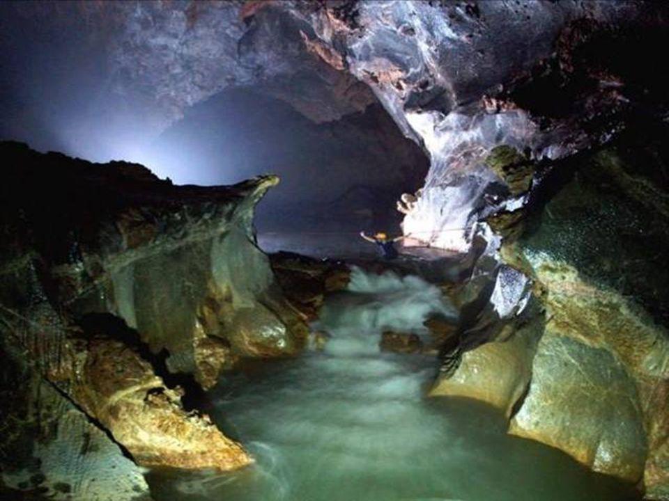 Po zhroucení stropu jeskyně se dovnitř dostane denní světlo a umožní vytvářet nové a unikátní ekosystémy.