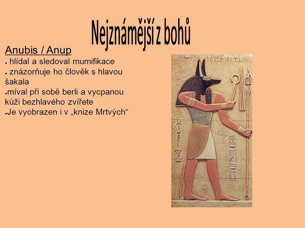 Anubis / Anup ● hlídal a sledoval mumifikace ● znázorňuje ho člověk s hlavou šakala ● míval při sobě berli a vycpanou kůži bezhlavého zvířete ● Je vyo