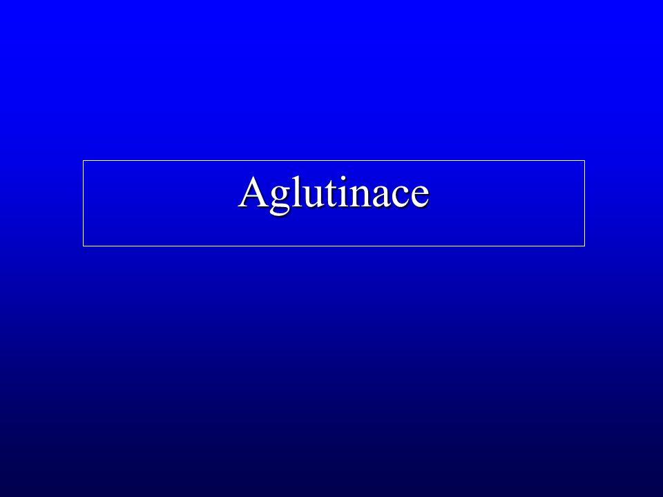Aglutinace
