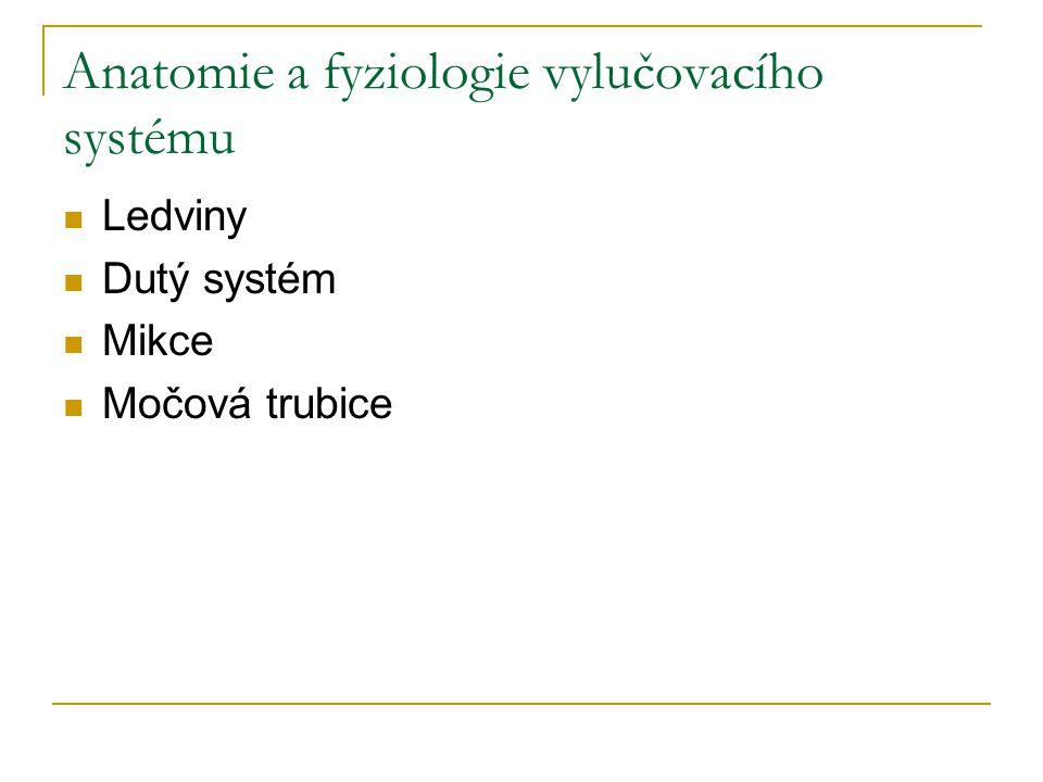 Anatomie a fyziologie vylučovacího systému Ledviny Dutý systém Mikce Močová trubice