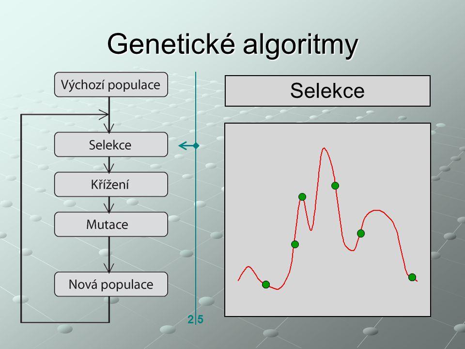 Genetické algoritmy Selekce 2 5