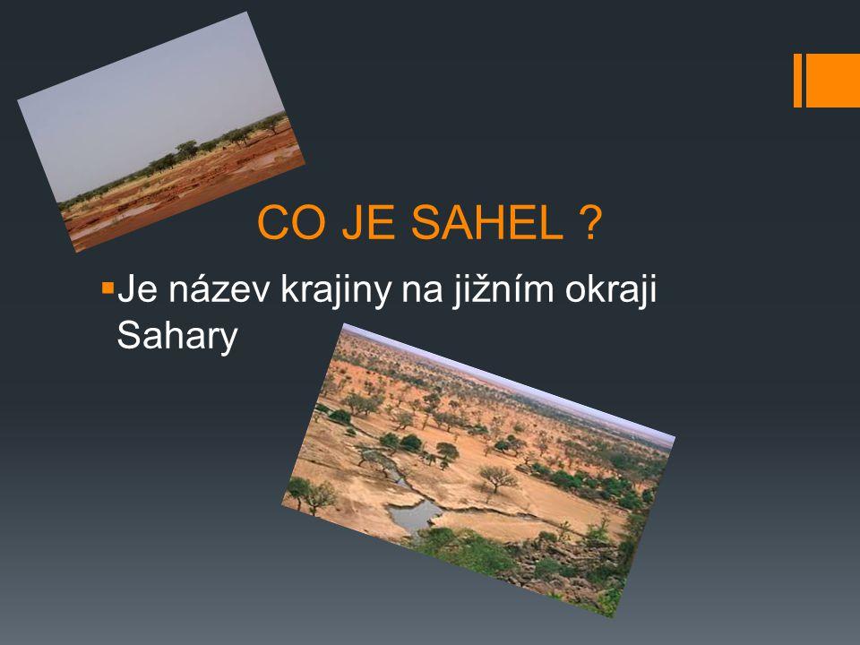 CO JE SAHEL ?  Je název krajiny na jižním okraji Sahary