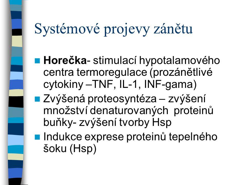 Systémové projevy zánětu Horečka- stimulací hypotalamového centra termoregulace (prozánětlivé cytokiny –TNF, IL-1, INF-gama) Zvýšená proteosyntéza – z
