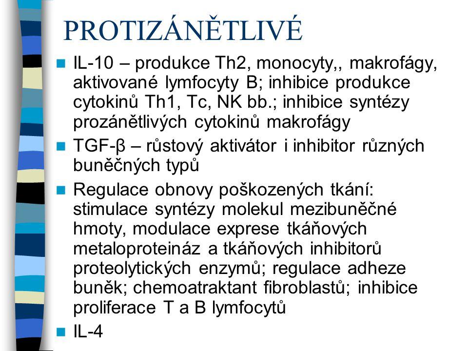 PROTIZÁNĚTLIVÉ IL-10 – produkce Th2, monocyty,, makrofágy, aktivované lymfocyty B; inhibice produkce cytokinů Th1, Tc, NK bb.; inhibice syntézy prozán
