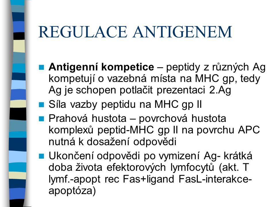 REGULACE ANTIGENEM Antigenní kompetice – peptidy z různých Ag kompetují o vazebná místa na MHC gp, tedy Ag je schopen potlačit prezentaci 2.Ag Síla va