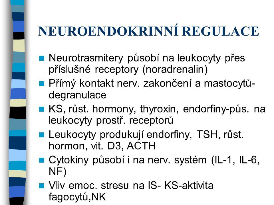 NEUROENDOKRINNÍ REGULACE Neurotrasmitery působí na leukocyty přes příslušné receptory (noradrenalin) Přímý kontakt nerv. zakončení a mastocytů- degran