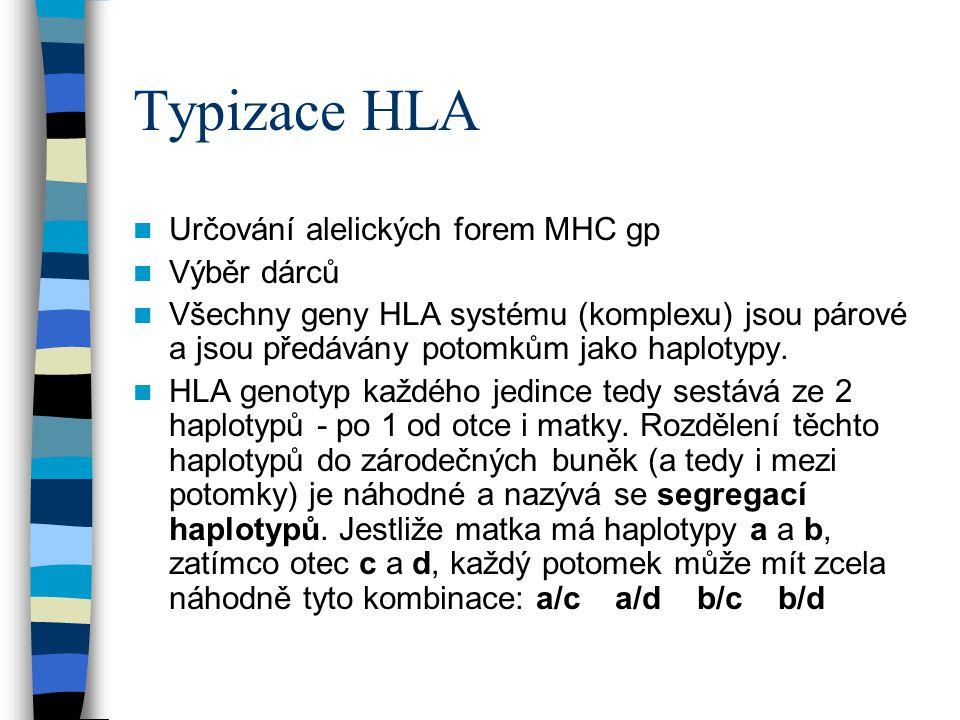 Typizace HLA Určování alelických forem MHC gp Výběr dárců Všechny geny HLA systému (komplexu) jsou párové a jsou předávány potomkům jako haplotypy. HL