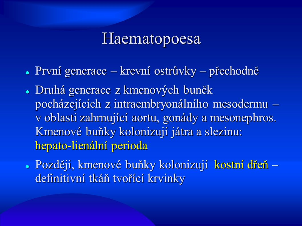 Haematopoesa