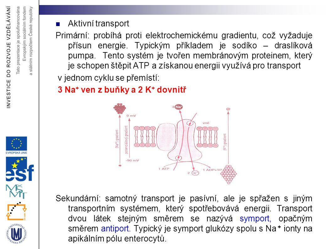Aktivní transport Primární: probíhá proti elektrochemickému gradientu, což vyžaduje přísun energie. Typickým příkladem je sodíko – draslíková pumpa. T
