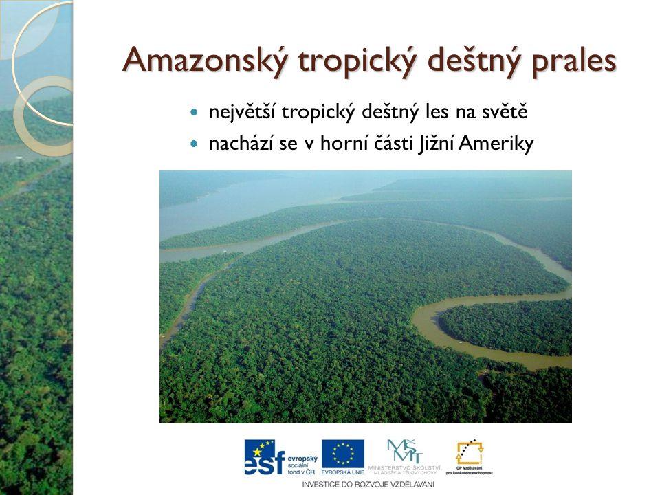 Amazonský tropický deštný prales Protéká jím řeka Amazonka, která je nejdelší a nejvodnatější řekou na Zemi.