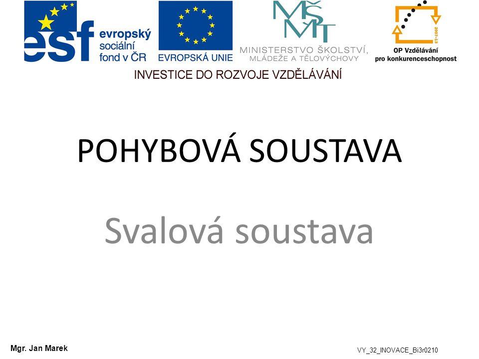 POHYBOVÁ SOUSTAVA Svalová soustava VY_32_INOVACE_Bi3r0210 Mgr. Jan Marek