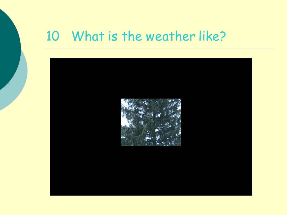 10 What is the weather like
