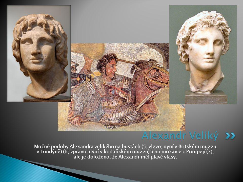 Možné podoby Alexandra velikého na bustách (5; vlevo; nyní v Britském muzeu v Londýně) (6; vpravo; nyní v kodaňském muzeu) a na mozaice z Pompejí (7),
