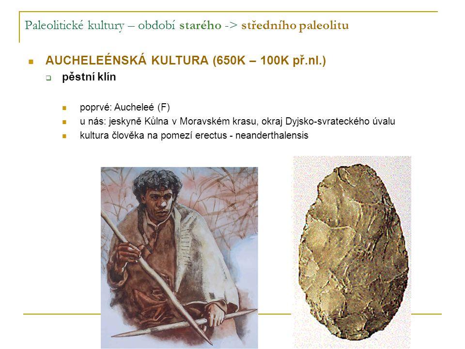 Paleolitické kultury – období starého -> středního paleolitu AUCHELEÉNSKÁ KULTURA (650K – 100K př.nl.)  pěstní klín poprvé: Aucheleé (F) u nás: jeskyně Kůlna v Moravském krasu, okraj Dyjsko-svrateckého úvalu kultura člověka na pomezí erectus - neanderthalensis