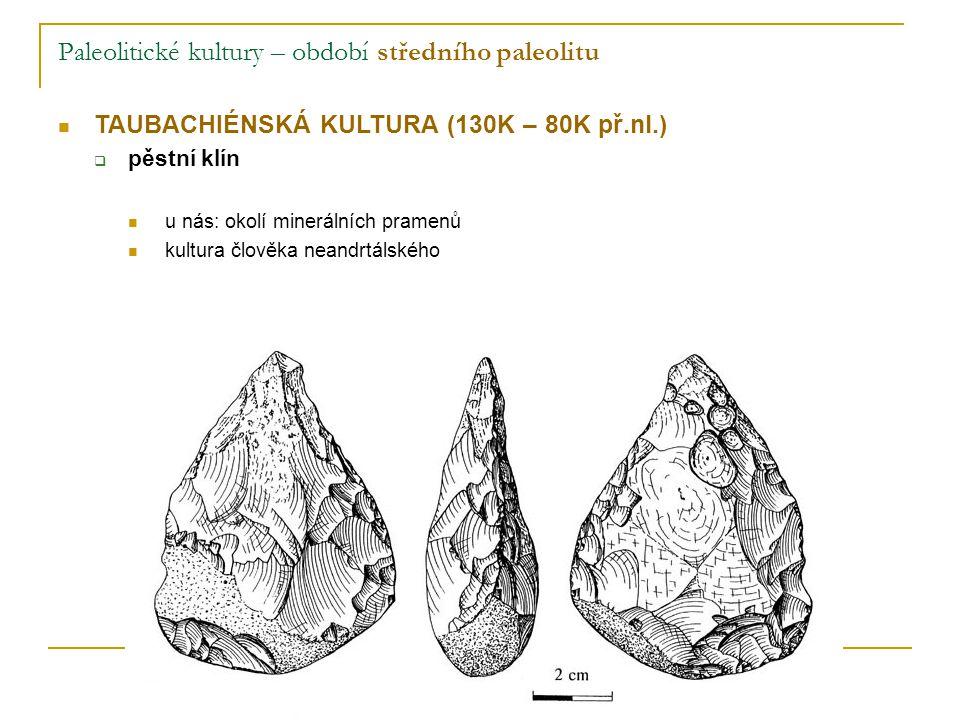 Paleolitické kultury – období středního paleolitu TAUBACHIÉNSKÁ KULTURA (130K – 80K př.nl.)  pěstní klín u nás: okolí minerálních pramenů kultura člověka neandrtálského