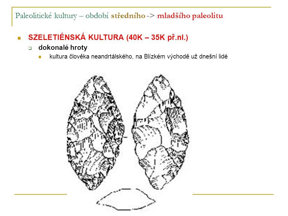 Paleolitické kultury – období středního -> mladšího paleolitu SZELETIÉNSKÁ KULTURA (40K – 35K př.nl.)  dokonalé hroty kultura člověka neandrtálského, na Blízkém východě už dnešní lidé