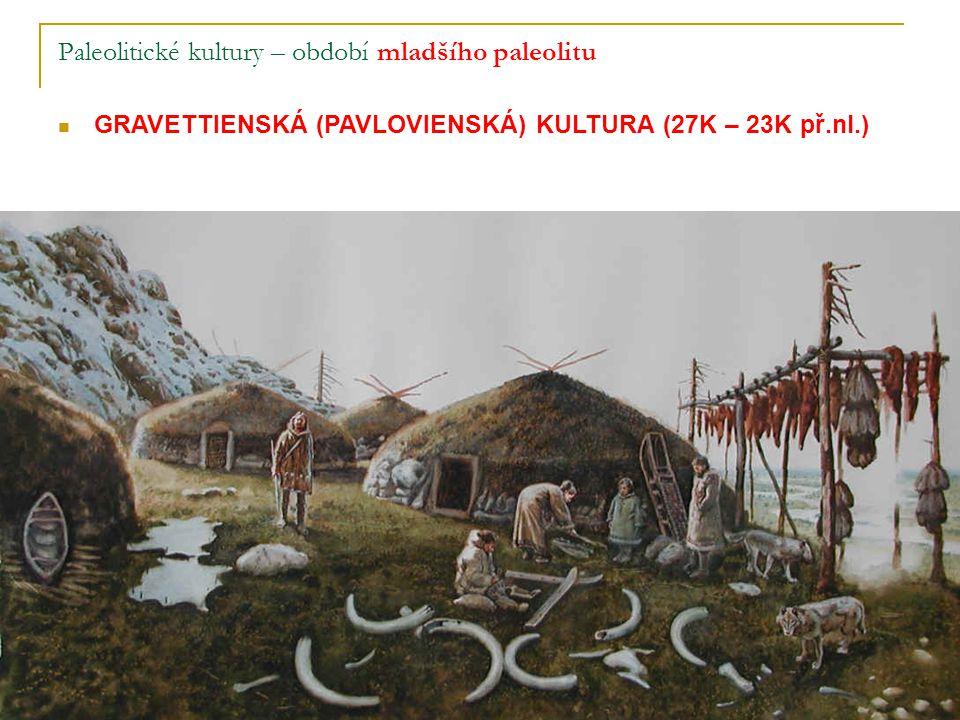 Paleolitické kultury – období mladšího paleolitu GRAVETTIENSKÁ (PAVLOVIENSKÁ) KULTURA (27K – 23K př.nl.)