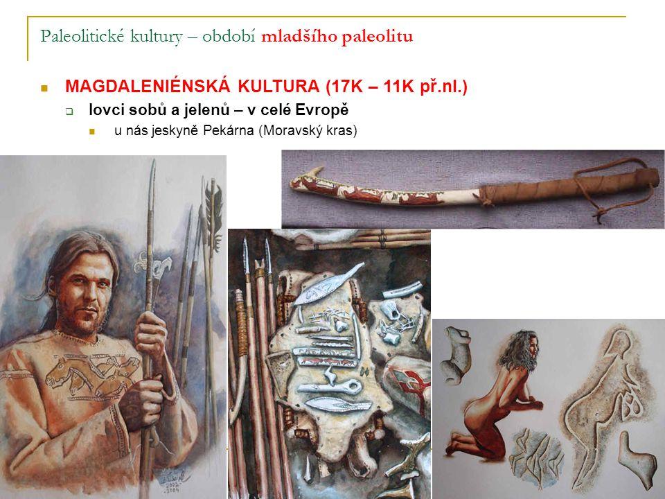Paleolitické kultury – období mladšího paleolitu MAGDALENIÉNSKÁ KULTURA (17K – 11K př.nl.)  lovci sobů a jelenů – v celé Evropě u nás jeskyně Pekárna (Moravský kras)