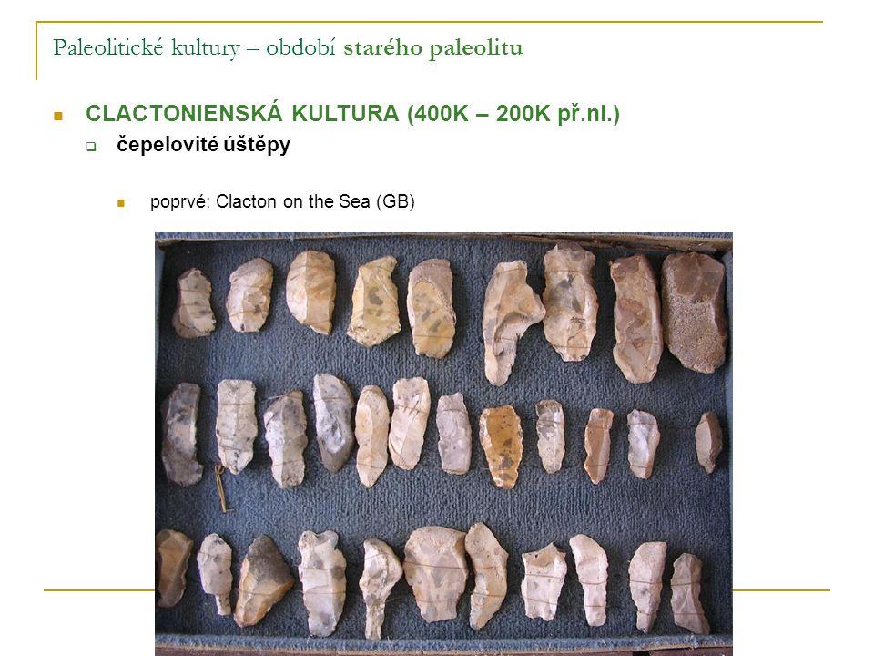 Paleolitické kultury – období mladšího paleolitu GRAVETTIENSKÁ (PAVLOVIENSKÁ) KULTURA (27K – 23K př.nl.)  slavní lovci mamutů zachovaly se i řezby z kosti, sošky willendorfskárekonstrukcevěstonická
