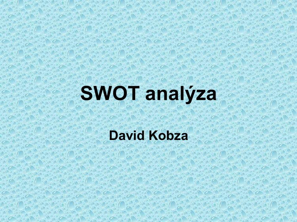SWOT analýza David Kobza