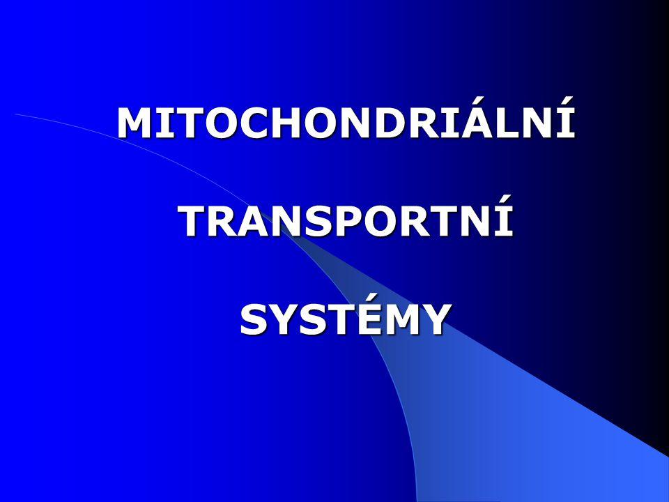 Mitochondrie jsou rozděleny do 4 oddělení