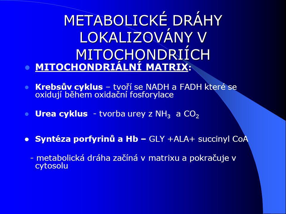 METABOLICKÉ DRÁHY LOKALIZOVÁNY V MITOCHONDRIÍCH MITOCHONDRIÁLNÍ MATRIX : Krebsův cyklus – tvoří se NADH a FADH které se oxidují během oxidační fosforylace Urea cyklus - tvorba urey z NH 3 a CO 2 Syntéza porfyrinů a Hb – GLY +ALA+ succinyl CoA - metabolická dráha začíná v matrixu a pokračuje v cytosolu